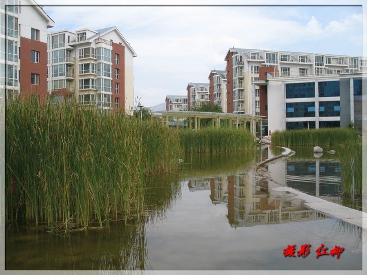 青海夏都西宁国际村小区图片