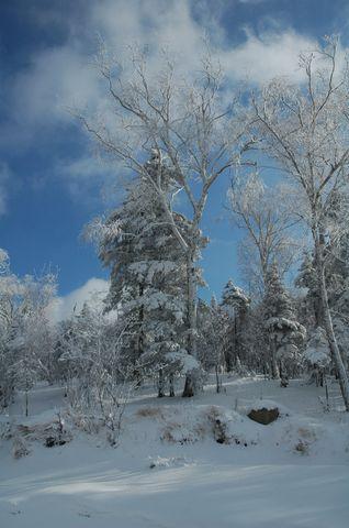 [原创]雪乡雪景1--雪原雾凇 - 松江蓑笠翁hitcdw - hitcdw摄影、旅游