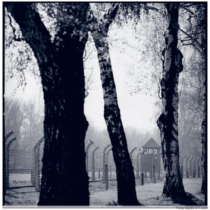【背景素材】黑白风景图