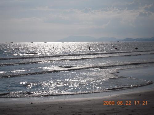 三亚湾海滩 20090822 - 朱达志 - 朱达志的博客