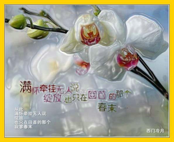 夏之祭 - 静远堂 - 静远堂 JING YUAN
