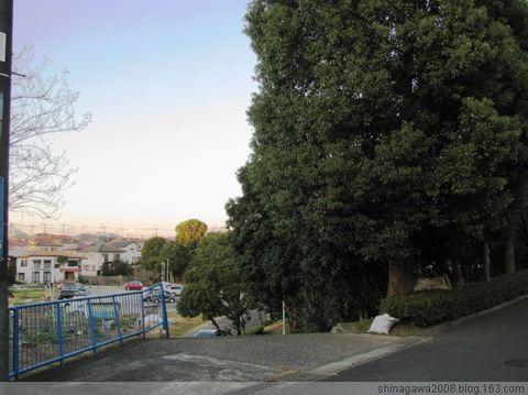 一月之某一天在千葉県 - 東京閑人 - 東京閑人的博客