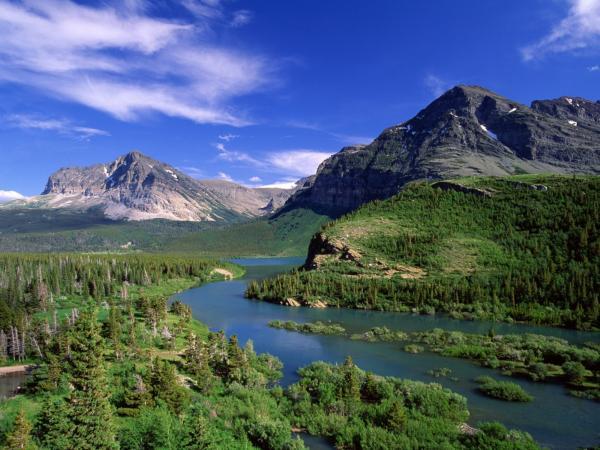 美丽的春天 - 北方狼族 - 850603435的博客