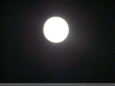 月   光 - 雪痴 - 暮春的野蔷薇