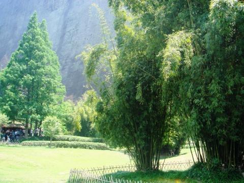 武夷山景色如画 - 九妹的小木屋 - 九妹的小木屋