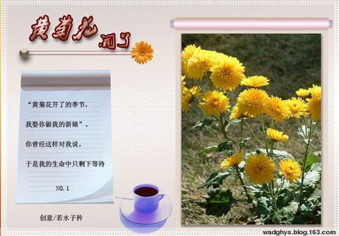 那一垄黄花——献给我日渐老去的母亲 - 想起——黄运生 - 想起黄运生