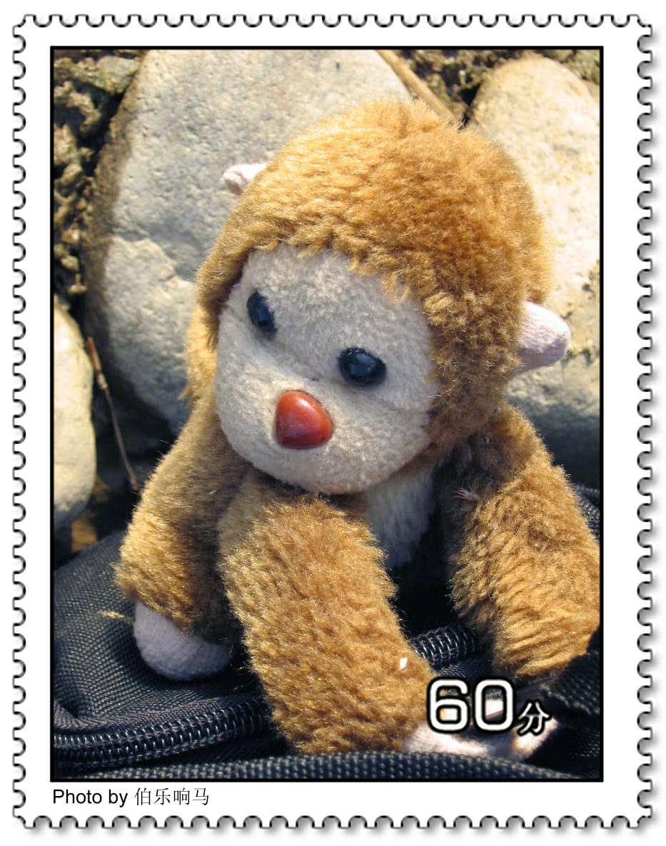 原创摄影:讲故事的猴子! - 伯乐响马 - 找寻灵感