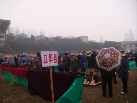 永州举办花卉盆景奇石展 - 一鸣 - 一鸣藏石