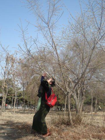 【原创】走在春风里 - 九月 - 九月博客