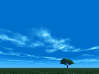情人的眼泪 —— 给蓝天的悄悄话