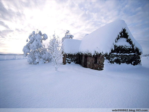 冬雪【原】 - 默然 -  抱琴看鹤去  枕石待云归