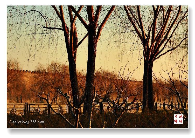 北京的冬天(原创摄影) - 冰滴卡布 - l-j-wei的个人主页