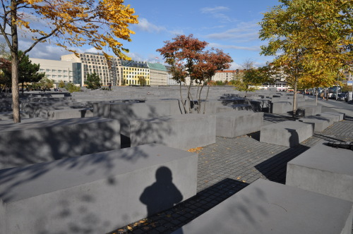 柏林墙遗址等 - 陶东风 - 陶东风