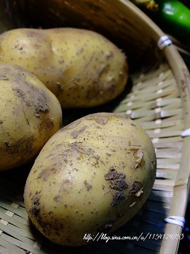 情有独钟话土豆 - 可可西里 - 可可西里