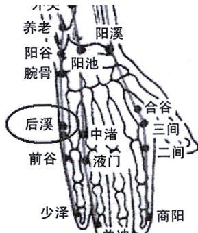 颈椎腰椎有病揉此穴 - hyih2009 - hyih2009的博客
