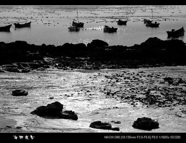 [原创]   海边即景 - 海狮 - 大连海狮的博客