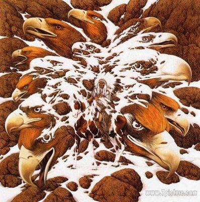 神奇画中的奥秘《图文》 - 让我伴随你一起游动 - 龙的天地