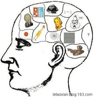 脑精密而神奇的器官—左右脑妙用如虎添翼(6)图文 - 柳乐童 - 柳墅乐童