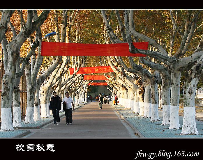 [原]冬已至,校园秋还浓 - 生有所息 - 生有所息