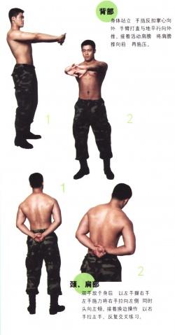 魔鬼体操----海军陆战队员教你锻炼身材(图) - 帅男无敌 - 海芋度假屋