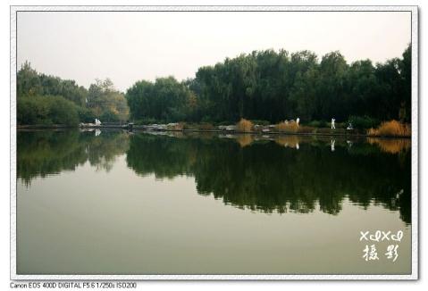 【金秋北京】秋色满园(北京植物园) - xixi - 老孟(xixi)旅游摄影博客
