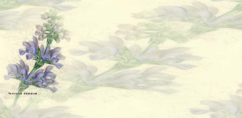 值得收藏的宽幅博客背景。 - 紫色妖姬1961 - zise1961的博客