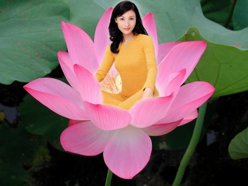 【U5】图像的合成之花中仙子的制作 - 南山百合 - 南山百合的博客