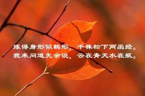 【杂记】禅秋 - 风情一剑 - 風情一劍的靜思世界