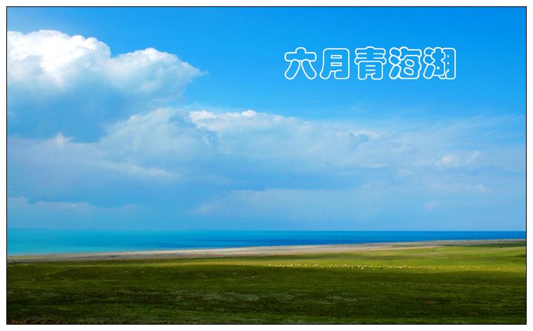 [原创]  六月青海湖 - 老K - 老K的历程