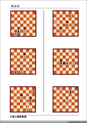 两步杀(09年元月19日-元月25日) - 南通小鱼儿--二附国际象棋培训基地 - 二附国际象棋--小鱼儿的博客