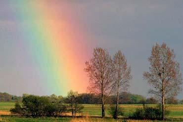 彩虹(现代诗)