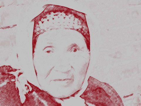 母亲一生撒的八个谎言(转) - WZM9580 - 王忠明的三叉神经博客