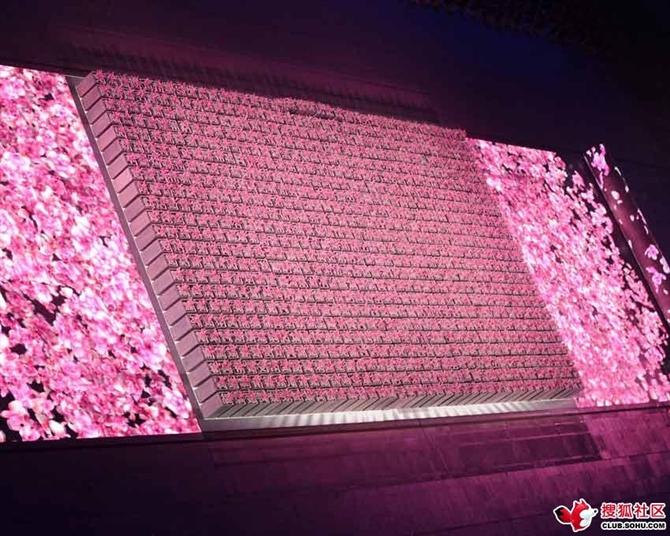 北京奥运会——世界和平 - 玉竹佳人 - 玉竹佳人的博客