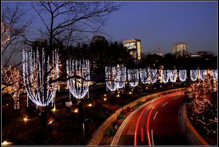 原创-来自东京的圣诞彩灯二 - 贵公子 - 徒步夜行者