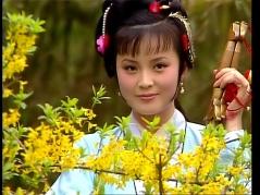 【浅谈红楼】经典剧照大赏 - 同恩 - 欢迎光临同恩的博园