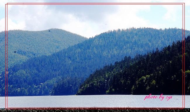 香格里拉碧塔海【原】 - 自由诗 - 人文历史自然 诗词曲赋杂谈