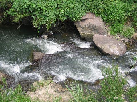 家乡的水(照片) - 江村一老头 - 江村一老头的茅草屋