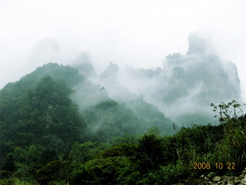 我的摄影---云雾山中好风光 - 犇犇牛 - --