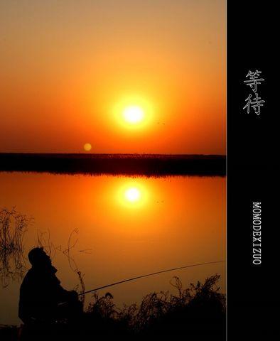 [原创图文]夕阳下的湿地(上) - MOMO - MOMO 的博客