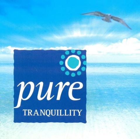 【专辑】纯净心灵系列(一)Pure Tranquility 静谥钢琴 320K/MP3 - 淡泊 - 淡泊