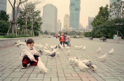 (转载)【摄影】外国人眼中的上海雪 - 冰冷的冬天 - 包装设计达人