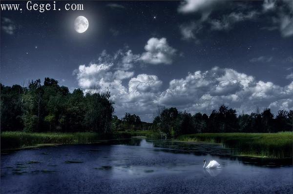 流星划过夜空,不仅是为了带来祝福...(08.11.21)  - 網際飛星 - 飛馳在天國花園夜空上的流星-網際飛星★