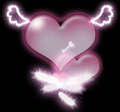 我的幸福生活2---相伴一生(原创) - 小金猪 - 以诚感人者,人以诚而应!