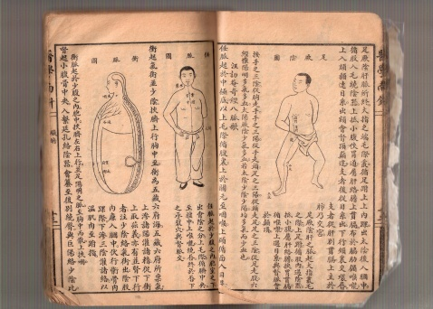 引用 我家的脉学书(很旧)禁转 - 借庐禅 - yangbw518的博客
