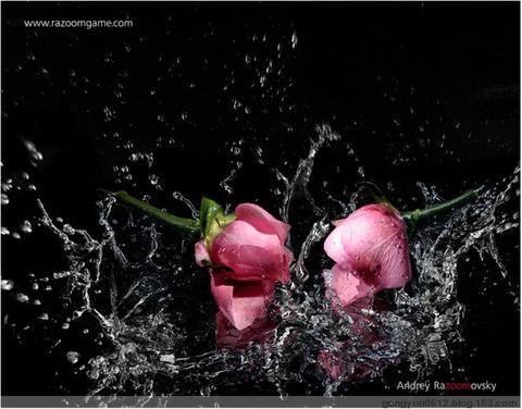 友情和爱情 - gongyun0612 - gongyun0612的博客