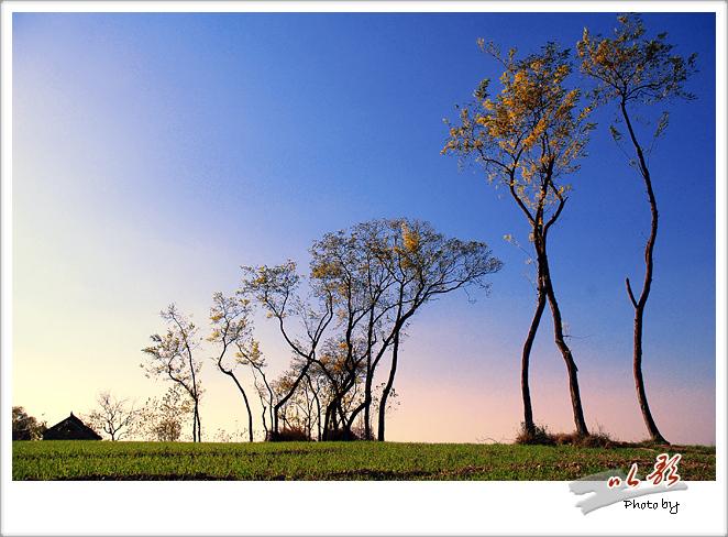 黄河故道风光 - 水湄风菲 - 水湄风菲修身养心阆苑