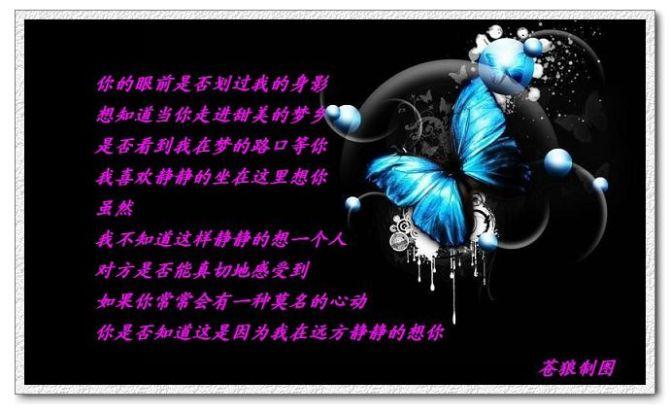 情思 - 苍狼 - zhang.meng.long 的博客