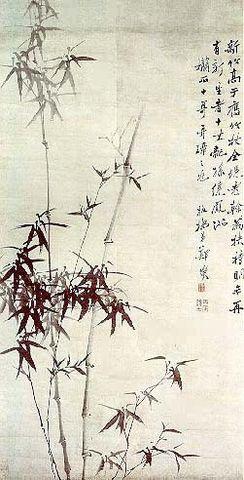 014[原创]山竹 - 赤竹山人 - 赤竹山人
