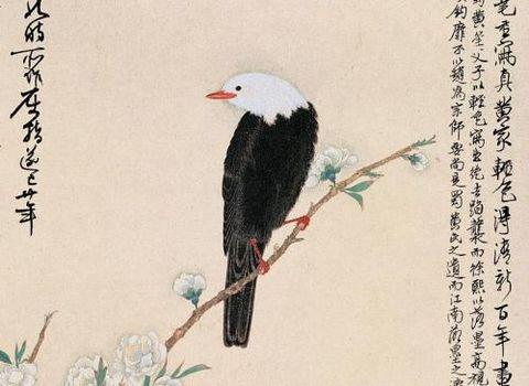 (古今名家笔下各种鸟禽汇编)(三) - 沧海一笑 - xxl2217246的博客
