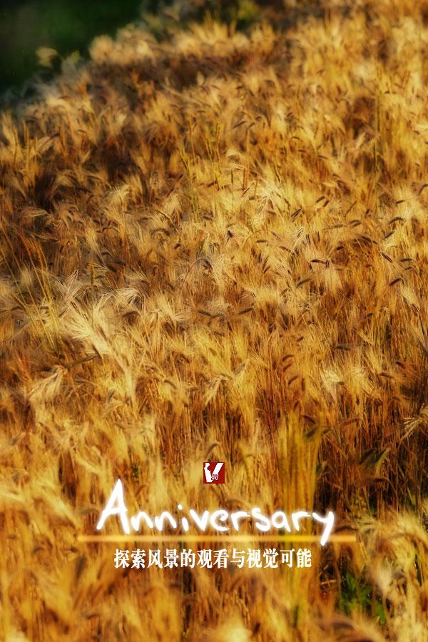 『行吟的视觉日志』周年纪念海报(素材取自香格里拉青稞)